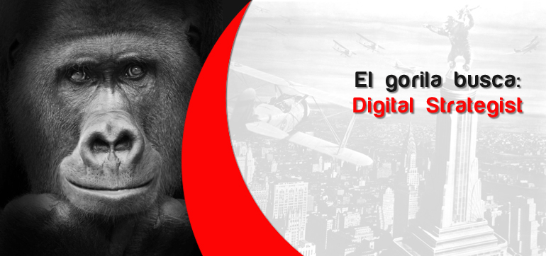 Buscamos Digital Strategist + Social Media Manager