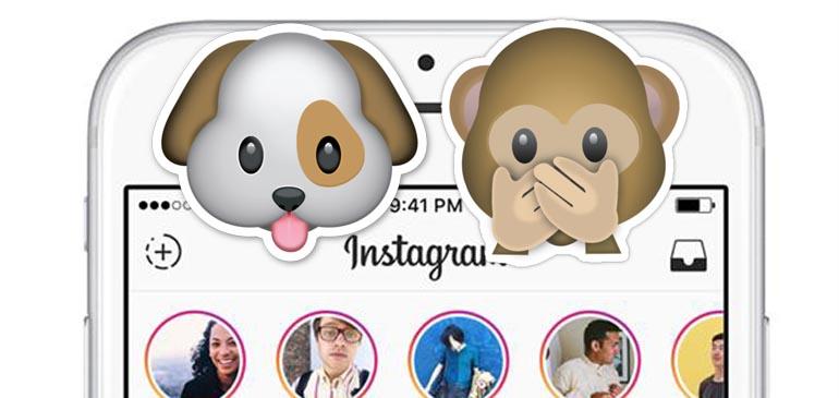 Instagram Stories y el perro del hortelano